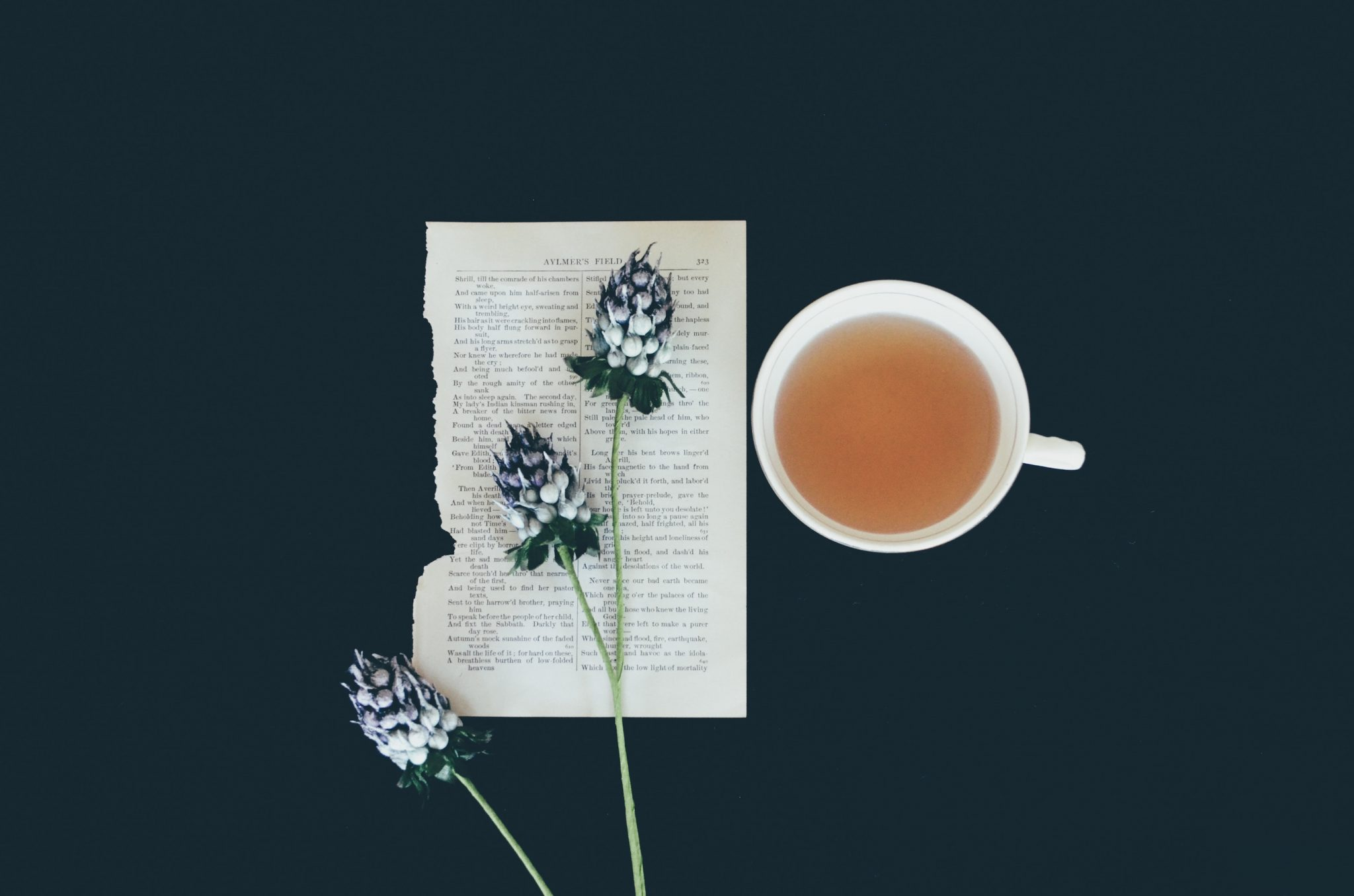 Healing Herbs: Teas and Extracts