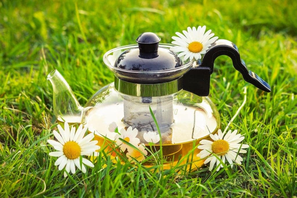 Chanca Piedra Tea - Linden Botanicals