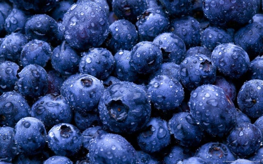 Blueberries for Brain Health - Bilberry - Linden Botanicals