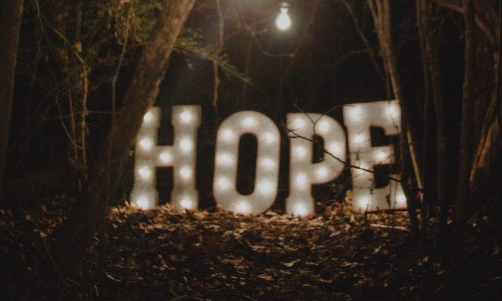 chronic illness support teas - LindenBotanicals.com