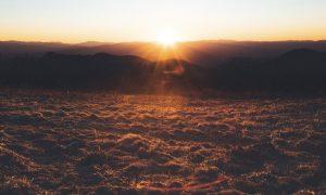 untreated Lyme disease - hopeful sunrise - Linden Botanicals