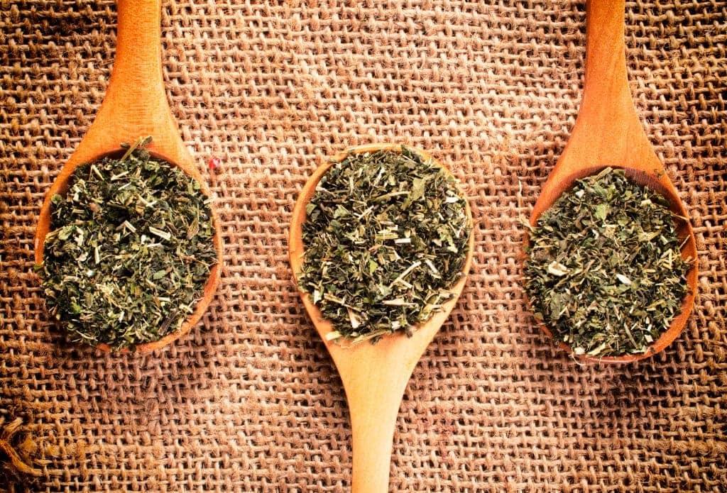 Detox Your Body with Linden Botanicals Phyllanthus niruri Tea